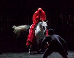 Le centaure et l'animal dans Z Théatre - Expos 2011_06_03_16_05_28_2010091405-12nb